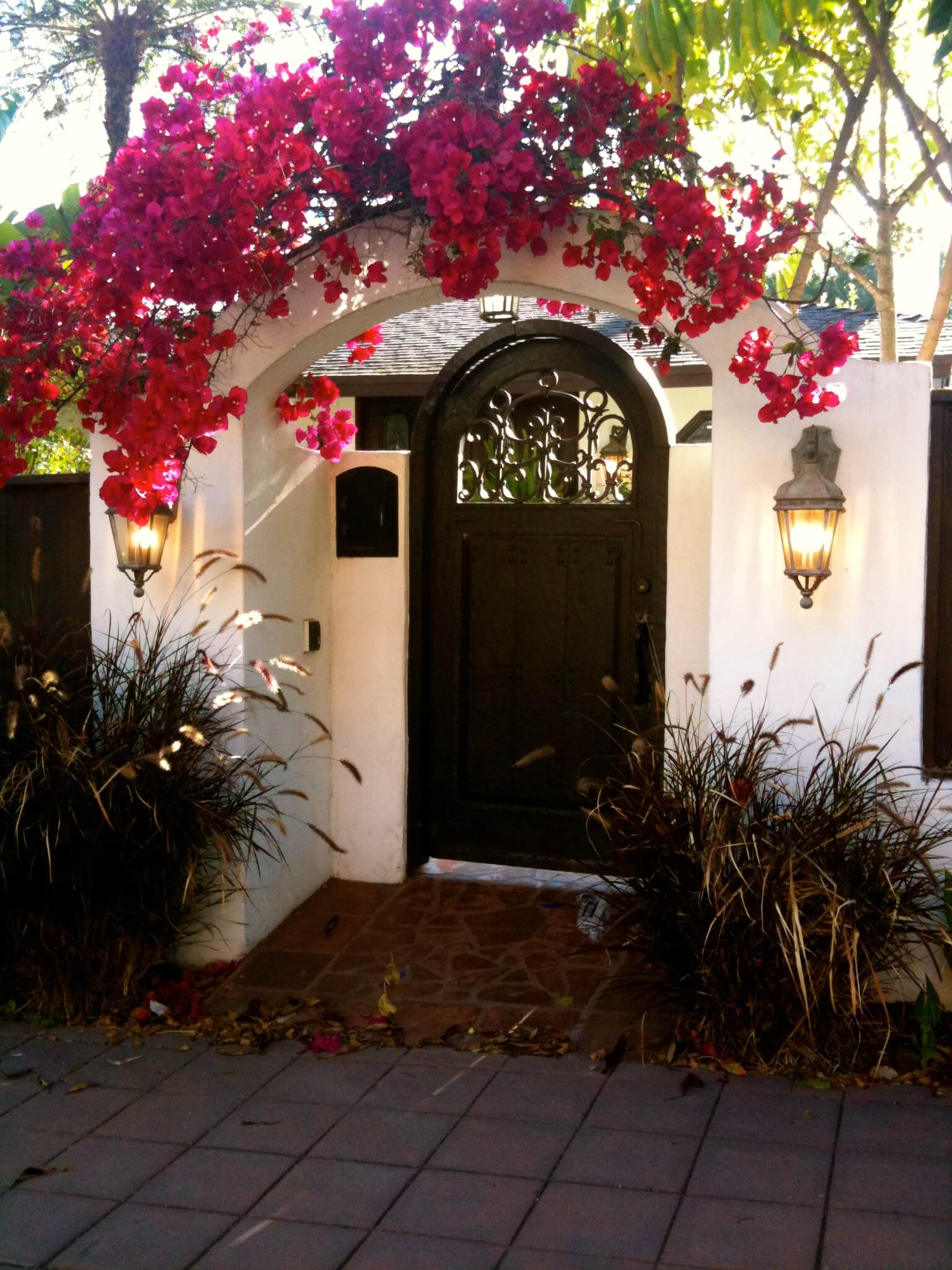 Diy Curb Appeal Create A Welcoming Botanical Archway