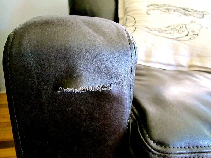 Great to repair tears in leather furniture