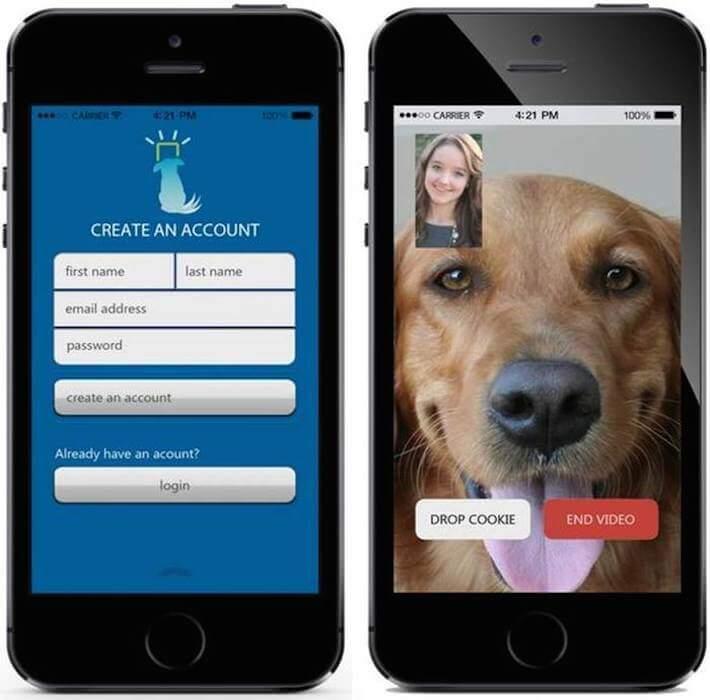 iCPooch phone app