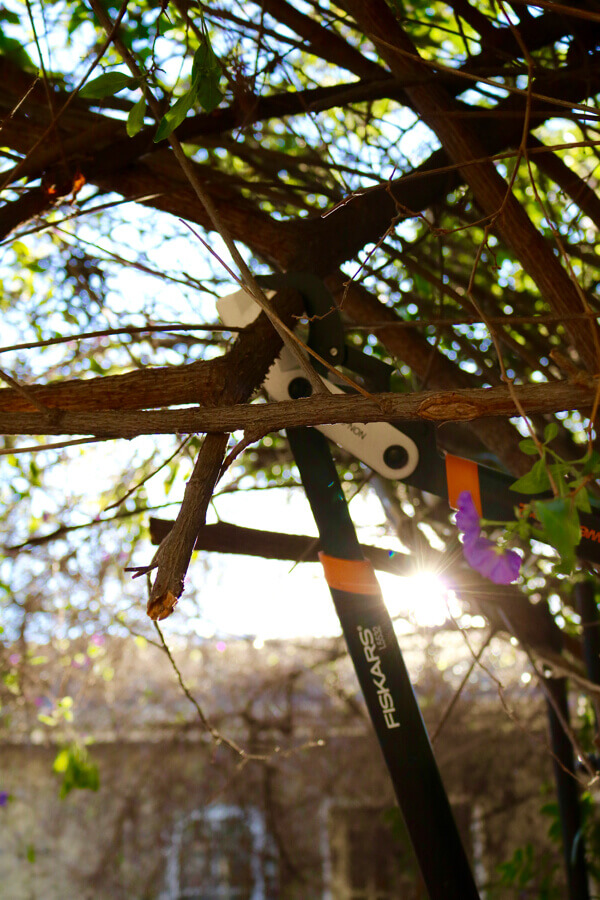 It's time to get prepp'n! The Power Gear2 Lopper cuts a variety of branches