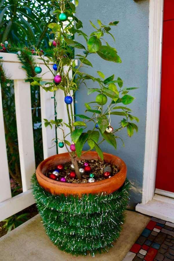 Finished decorated planter and orange tree
