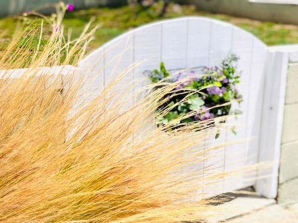 Finished garden gate looks so beautiful through grass